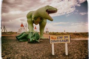 Beware of Rex