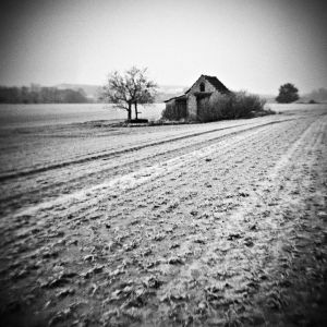Old Hovel in the Field