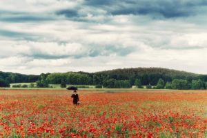 Lost in a Field of Poppy